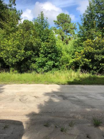 1687 Mallard Drive SW, Supply, NC 28462 (MLS #100128529) :: Century 21 Sweyer & Associates