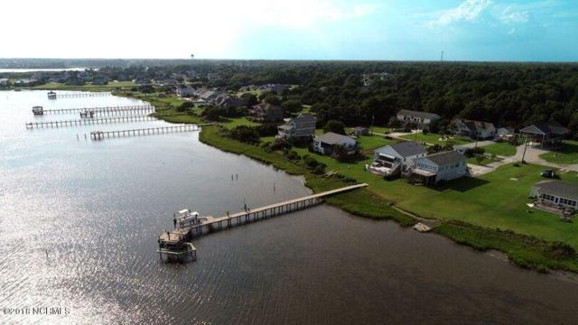 175 Salty Shores Point Drive, Newport, NC 28570 (MLS #100129573) :: Coldwell Banker Sea Coast Advantage
