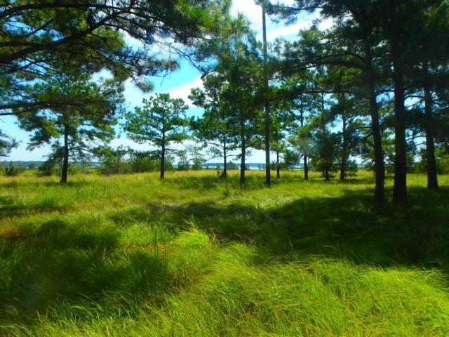 Tbd S Plantation Lane, Swansboro, NC 28584 (MLS #100130791) :: Century 21 Sweyer & Associates