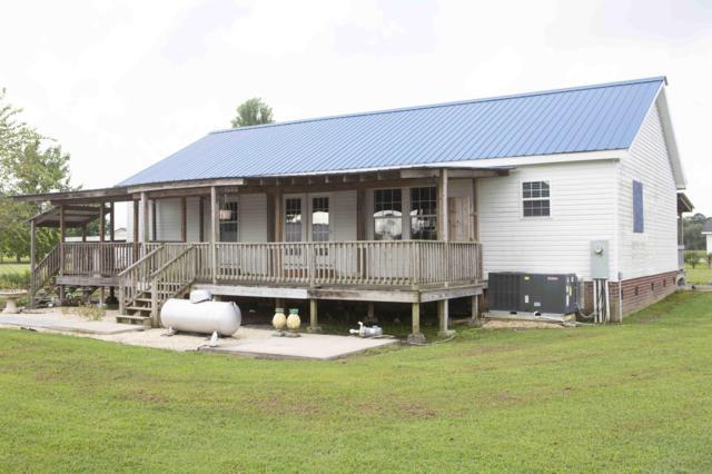 4437 Pleasant Plain Rd, Ayden, NC 28513 (MLS #100133575) :: The Pistol Tingen Team- Berkshire Hathaway HomeServices Prime Properties