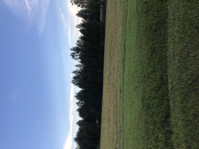 4440 Alan Place, Farmville, NC 27828 (MLS #100133659) :: Berkshire Hathaway HomeServices Prime Properties