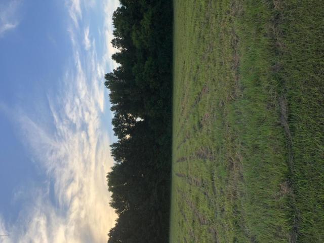 4495 Alan Place, Farmville, NC 27828 (MLS #100133664) :: Berkshire Hathaway HomeServices Prime Properties