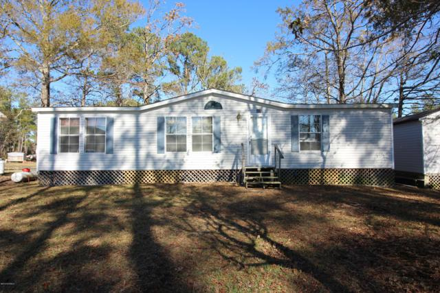 47 Point Avenue, Belhaven, NC 27810 (MLS #100134258) :: Chesson Real Estate Group