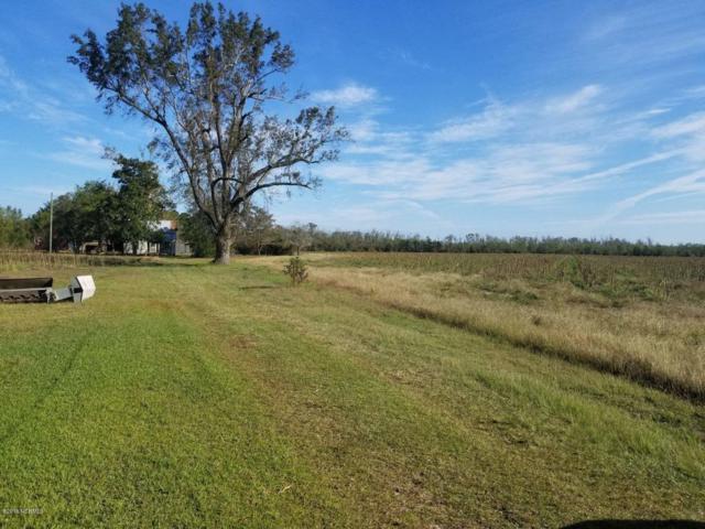 2460 White Oak River Road, Maysville, NC 28555 (MLS #100136409) :: Donna & Team New Bern