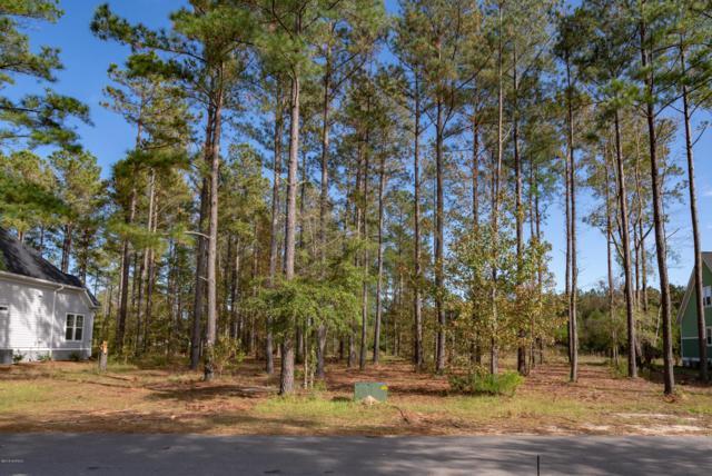 364 Cornubia Drive, Castle Hayne, NC 28429 (MLS #100137757) :: The Keith Beatty Team