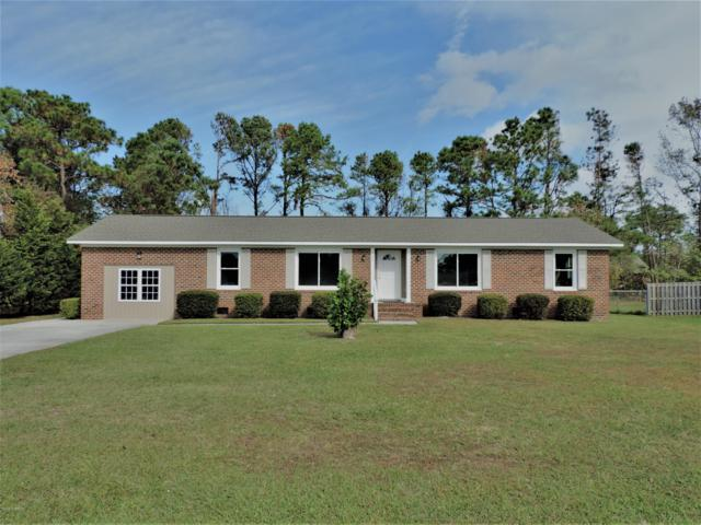 443 John S Mosby Drive, Wilmington, NC 28412 (MLS #100139173) :: Courtney Carter Homes