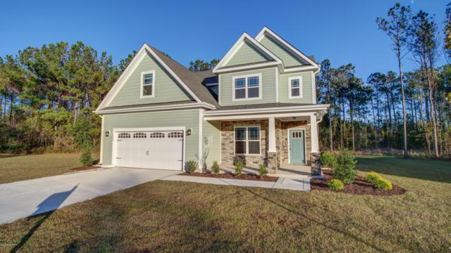 110 E Goldeneye Court, Sneads Ferry, NC 28460 (MLS #100140197) :: Coldwell Banker Sea Coast Advantage
