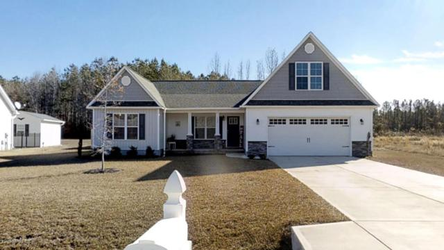 132 Waterford Way, Maysville, NC 28555 (MLS #100142201) :: Coldwell Banker Sea Coast Advantage