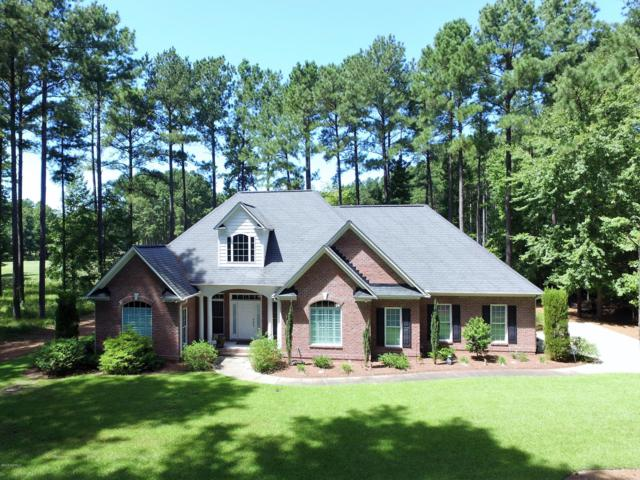 441 Cypress Landing Trail, Chocowinity, NC 27817 (MLS #100143356) :: Berkshire Hathaway HomeServices Prime Properties