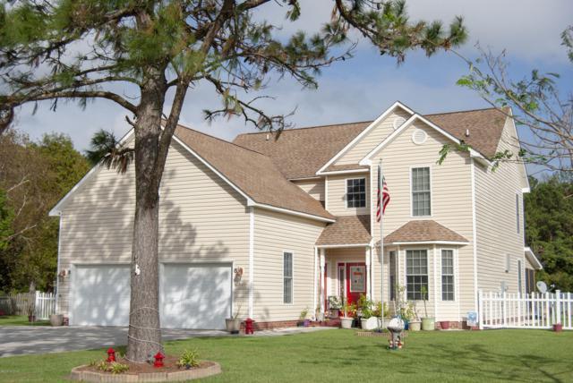 319 Silver Creek Landing Road, Swansboro, NC 28584 (MLS #100146293) :: RE/MAX Essential