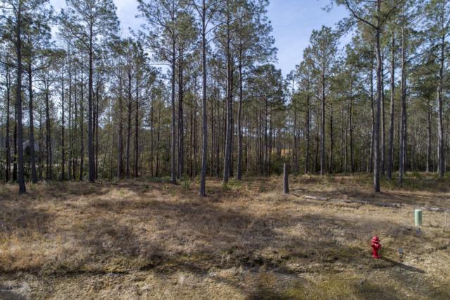 208 Alderman Landing Road, Holly Ridge, NC 28445 (MLS #100150409) :: Lynda Haraway Group Real Estate
