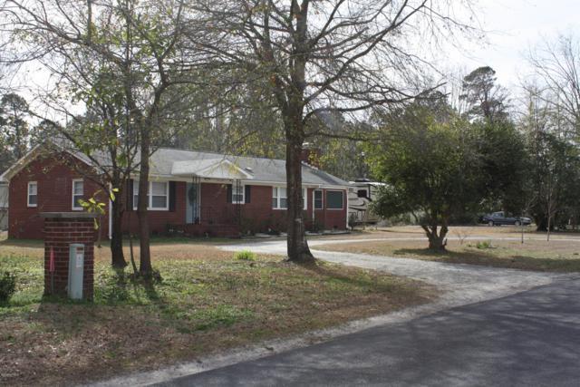 3912 Lynn Avenue, Castle Hayne, NC 28429 (MLS #100150739) :: RE/MAX Essential