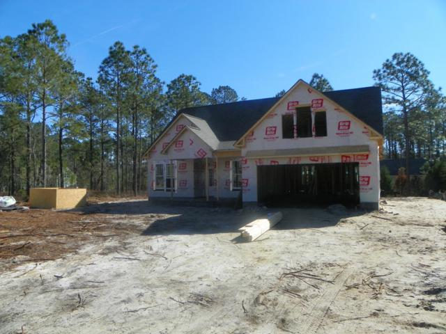 203 Whimbrel Way, Hampstead, NC 28443 (MLS #100152672) :: Courtney Carter Homes