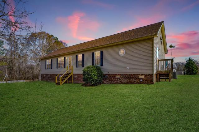 1174 Riggs Road, Maysville, NC 28555 (MLS #100155090) :: RE/MAX Elite Realty Group