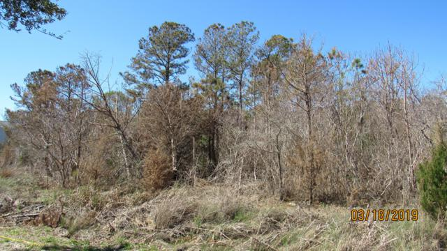 Lots 17&37 Riverside Drive, Sneads Ferry, NC 28460 (MLS #100155437) :: The Oceanaire Realty