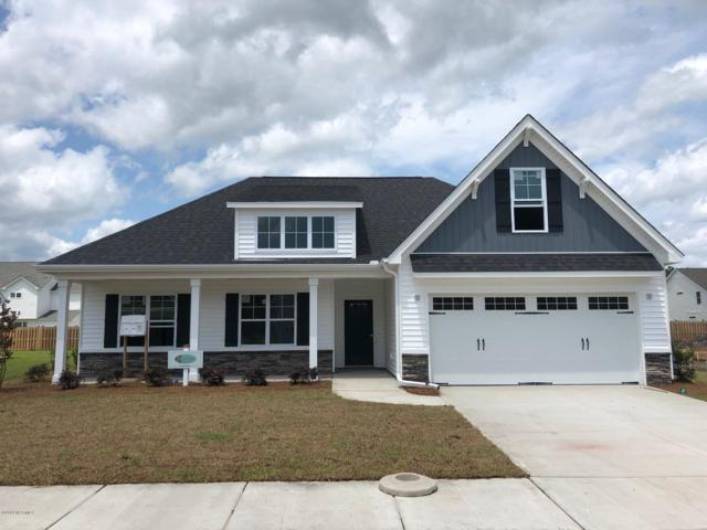 4213 Bow Spray Lane, Castle Hayne, NC 28429 (MLS #100156090) :: The Keith Beatty Team