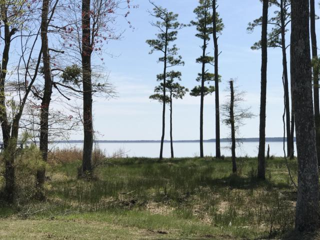 Lot 2 E Dowry Creek, Belhaven, NC 27810 (MLS #100157708) :: RE/MAX Essential