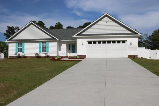 329 Star Hill Drive, Cape Carteret, NC 28584 (MLS #100159147) :: Courtney Carter Homes