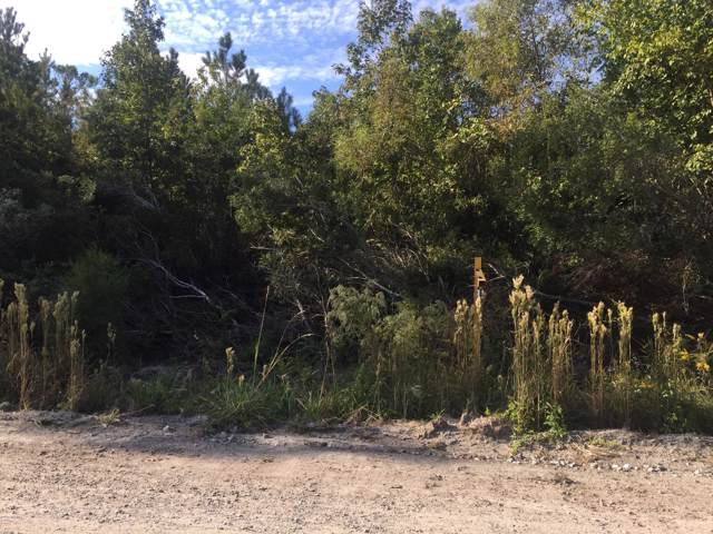 Lot #15 Gibson Branch Road, Maysville, NC 28555 (MLS #100160061) :: Lynda Haraway Group Real Estate