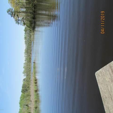 43 Treasure Pointe Drive, Bath, NC 27808 (MLS #100160524) :: Carolina Elite Properties LHR
