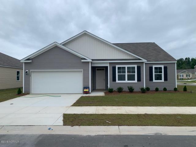 1725 Shallow Brook Run Lot 53, Wilmington, NC 28411 (MLS #100160551) :: Vance Young and Associates