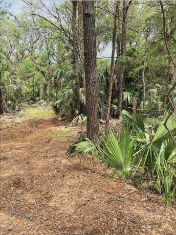 9 Poor Mans Pepper, Bald Head Island, NC 28461 (MLS #100163808) :: Coldwell Banker Sea Coast Advantage