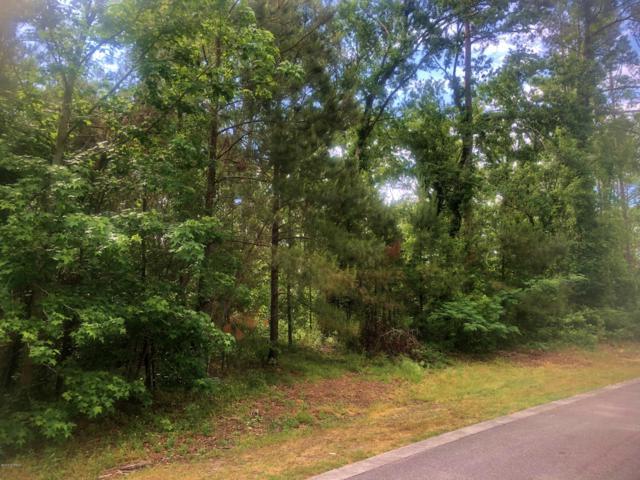 114 Brookhaven Trail, Leland, NC 28451 (MLS #100163918) :: Century 21 Sweyer & Associates