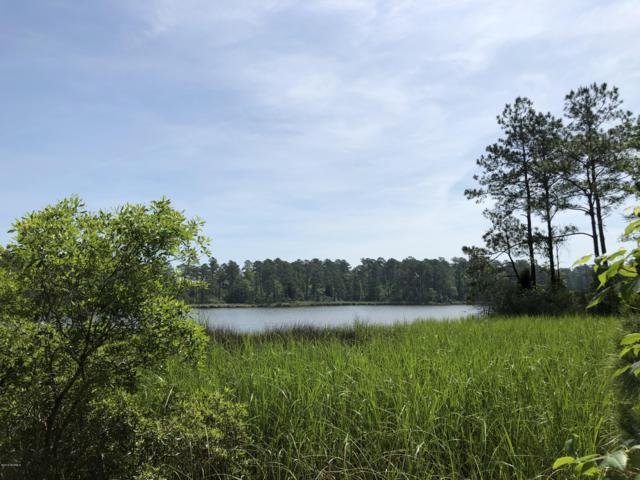 Lot 18 Davis Lane, Belhaven, NC 27810 (MLS #100165023) :: Vance Young and Associates