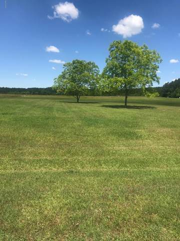 Lot 41 Fernwood Court, Bath, NC 27808 (MLS #100165728) :: Berkshire Hathaway HomeServices Hometown, REALTORS®