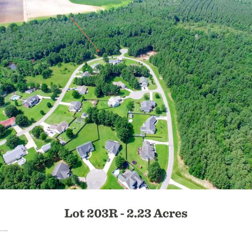 203r Winding Creek Road, Rocky Point, NC 28457 (MLS #100166488) :: RE/MAX Elite Realty Group