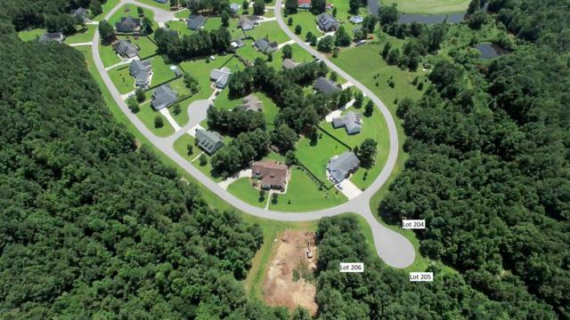 206 Winding Creek Road, Rocky Point, NC 28457 (MLS #100166491) :: RE/MAX Elite Realty Group