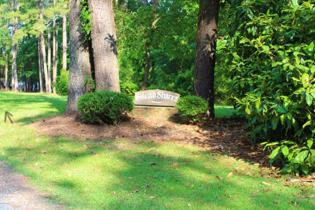 4 State Road 1119 Off, Blounts Creek, NC 27814 (MLS #100169433) :: Frost Real Estate Team