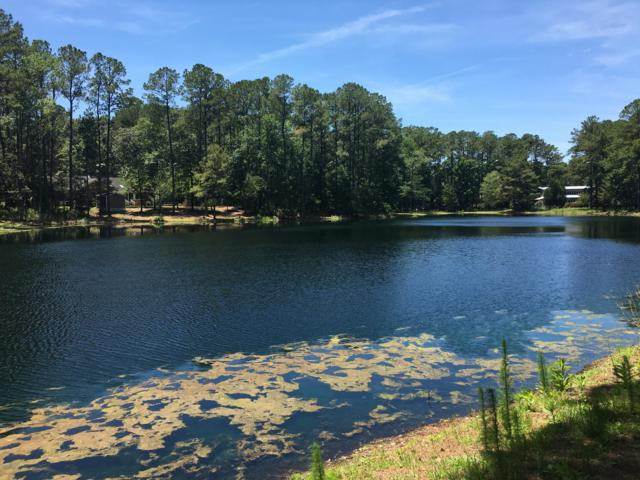 201 W Lake View Lane, Washington, NC 27889 (MLS #100170610) :: Courtney Carter Homes