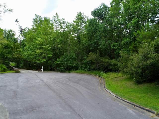 314 Drake Landing, New Bern, NC 28560 (MLS #100174701) :: David Cummings Real Estate Team
