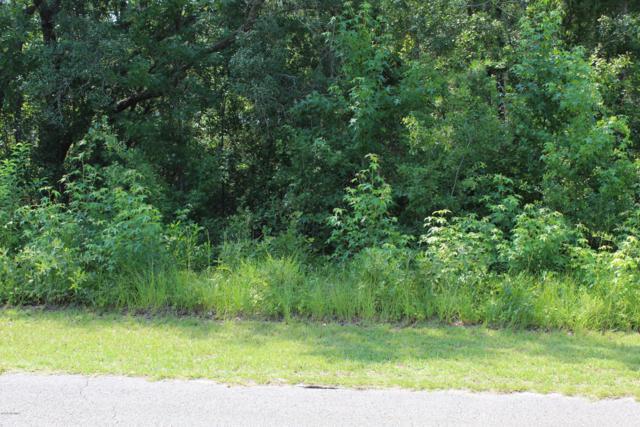 2887 Woodthrush Lane SW, Shallotte, NC 28470 (MLS #100175338) :: Lynda Haraway Group Real Estate