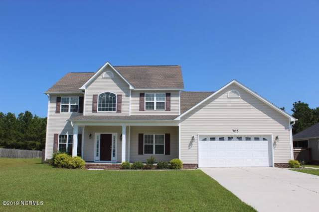 705 Shearwater Lane, Swansboro, NC 28584 (MLS #100175945) :: The Cheek Team
