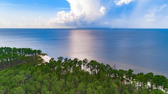 125 Bluefin Court, Beaufort, NC 28516 (MLS #100180871) :: RE/MAX Elite Realty Group