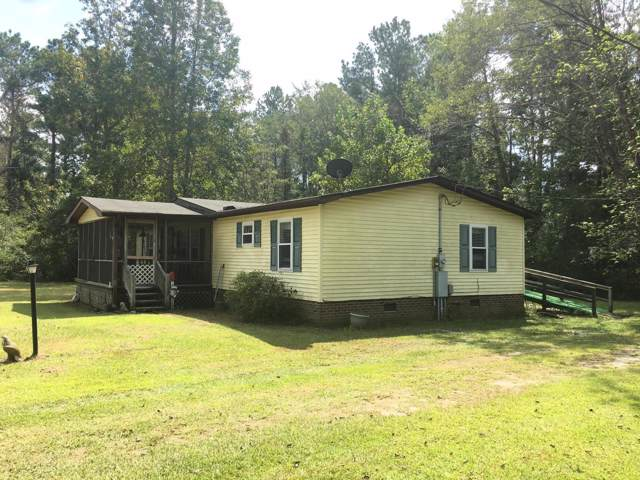 1196 Arvida Spur Road, Rocky Point, NC 28457 (MLS #100185180) :: Vance Young and Associates