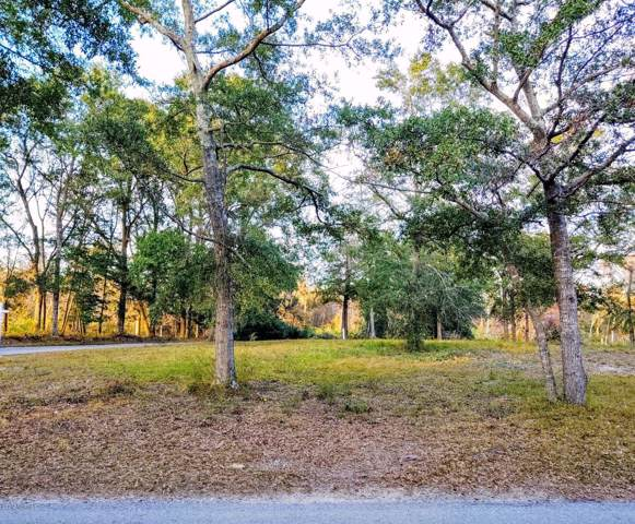 425 Trout Lily Lane, Southport, NC 28461 (MLS #100189775) :: Vance Young and Associates