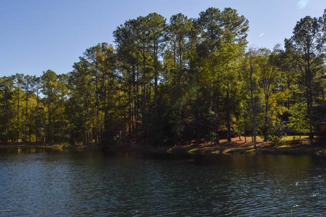 193 Pamlico River Drive, Washington, NC 27889 (MLS #100191454) :: Frost Real Estate Team