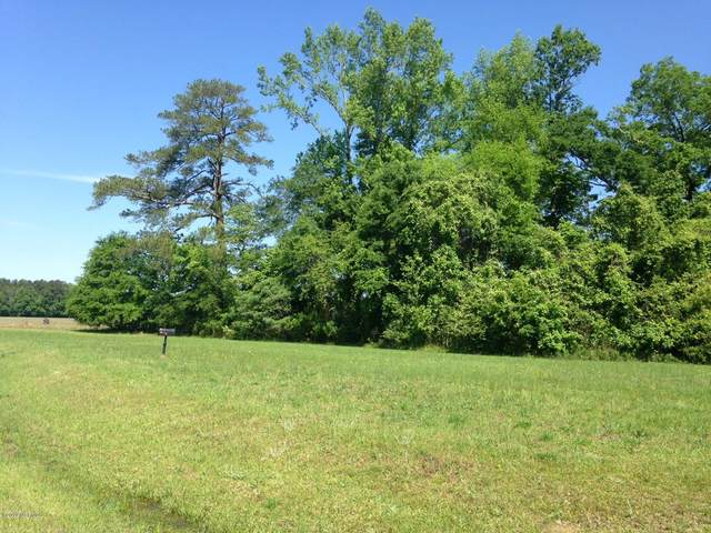 Lot 13 Sabre Pointe Drive, Bath, NC 27808 (MLS #100192543) :: Castro Real Estate Team