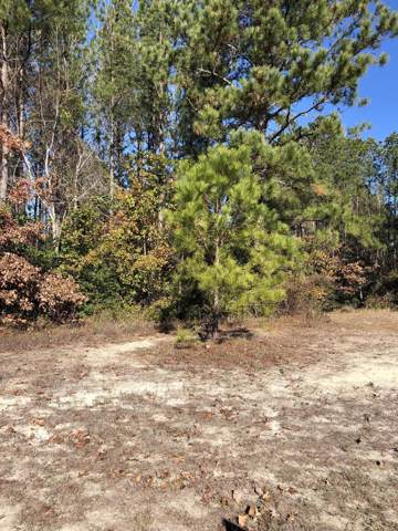 Lot 60 Summerset Landing, Hampstead, NC 28443 (MLS #100196995) :: Berkshire Hathaway HomeServices Hometown, REALTORS®