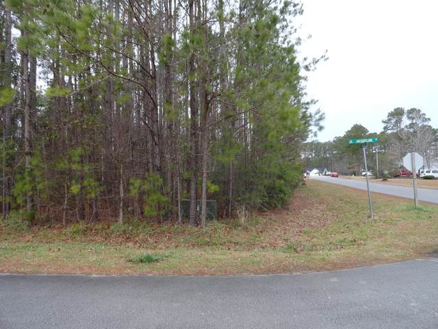 202 Jacqueline Drive, Havelock, NC 28532 (MLS #100203276) :: Lynda Haraway Group Real Estate