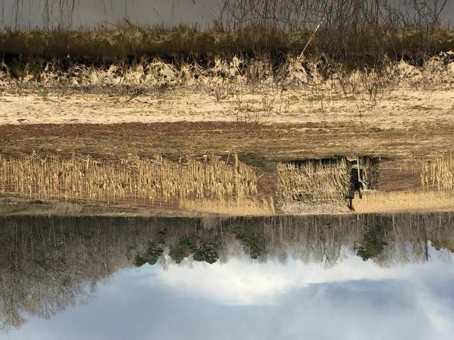 45 Ac Gum Swamp Road, Engelhard, NC 27824 (MLS #100204384) :: CENTURY 21 Sweyer & Associates