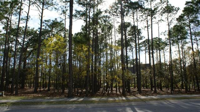 3777 Bancroft Place, Southport, NC 28461 (MLS #100211357) :: Thirty 4 North Properties Group