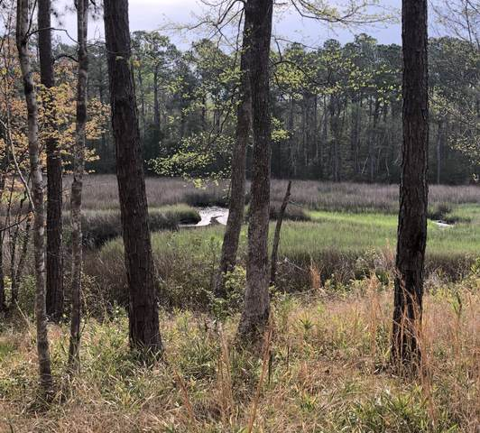 Lot 205 Ravenswood Road, Hampstead, NC 28443 (MLS #100211474) :: The Oceanaire Realty