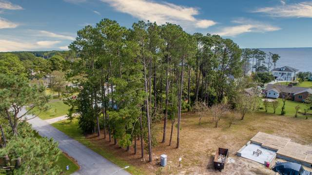 1106 Link Lane, Oriental, NC 28571 (MLS #100213938) :: Barefoot-Chandler & Associates LLC
