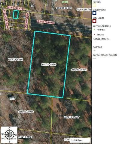 000 Blue Farm Road, Laurinburg, NC 28352 (MLS #100218670) :: The Keith Beatty Team