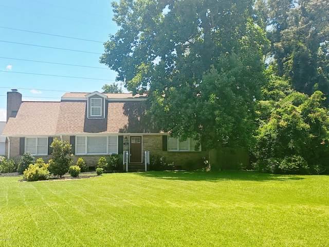 102 Marion Court, Jacksonville, NC 28546 (MLS #100219944) :: Lynda Haraway Group Real Estate