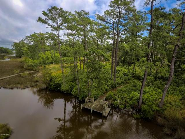 315/319 Chadwick Shore Drive, Sneads Ferry, NC 28460 (MLS #100223946) :: The Chris Luther Team